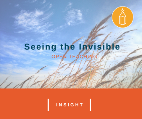 Open Teaching: Seeing the Invisible