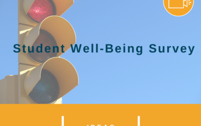 Student Well-Being Survey